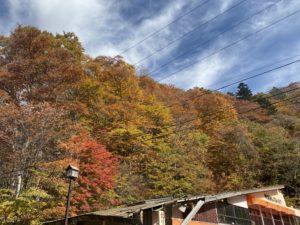 立木観音からの風景