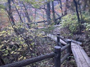 むささび橋への道のり